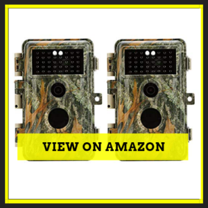 BlazeVideo Game Trail Deer Cameras