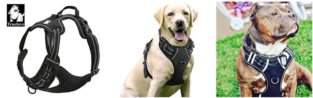 10 Best Dog Harnesses For Running 2020 Reviews    Buyers Guide
